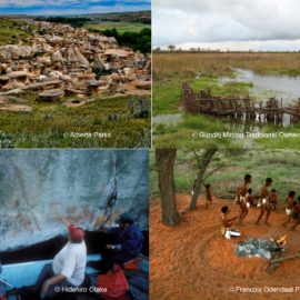 Background Research for Indigenous Heritage Working Group